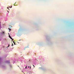 printemps ayurvéda