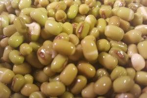 haricots mungo ou soja vert pour kitchery