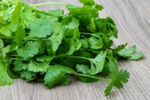 cuisine naturelle vegan a la coriandre