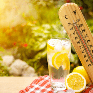 conseils canicule ayurveda
