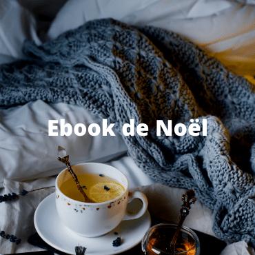 Ebook de noel - les conseils ayurvediques