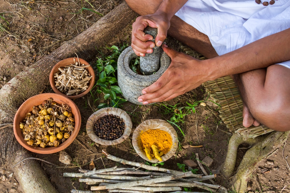 ateliers cuisine et formation ayurveda